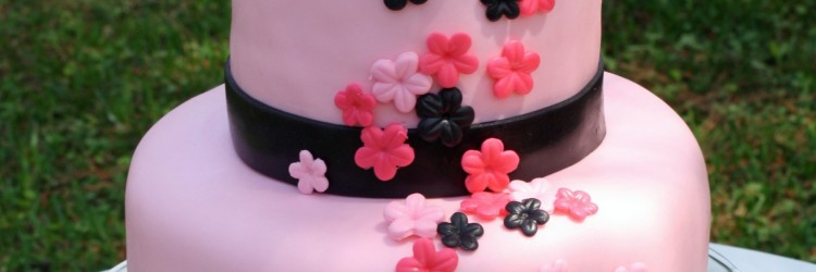 Black and Pink Bridal Shower Cake