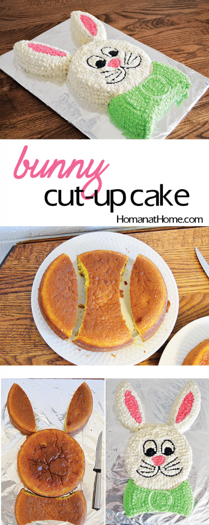 Easy Easter Bunny Cake Template