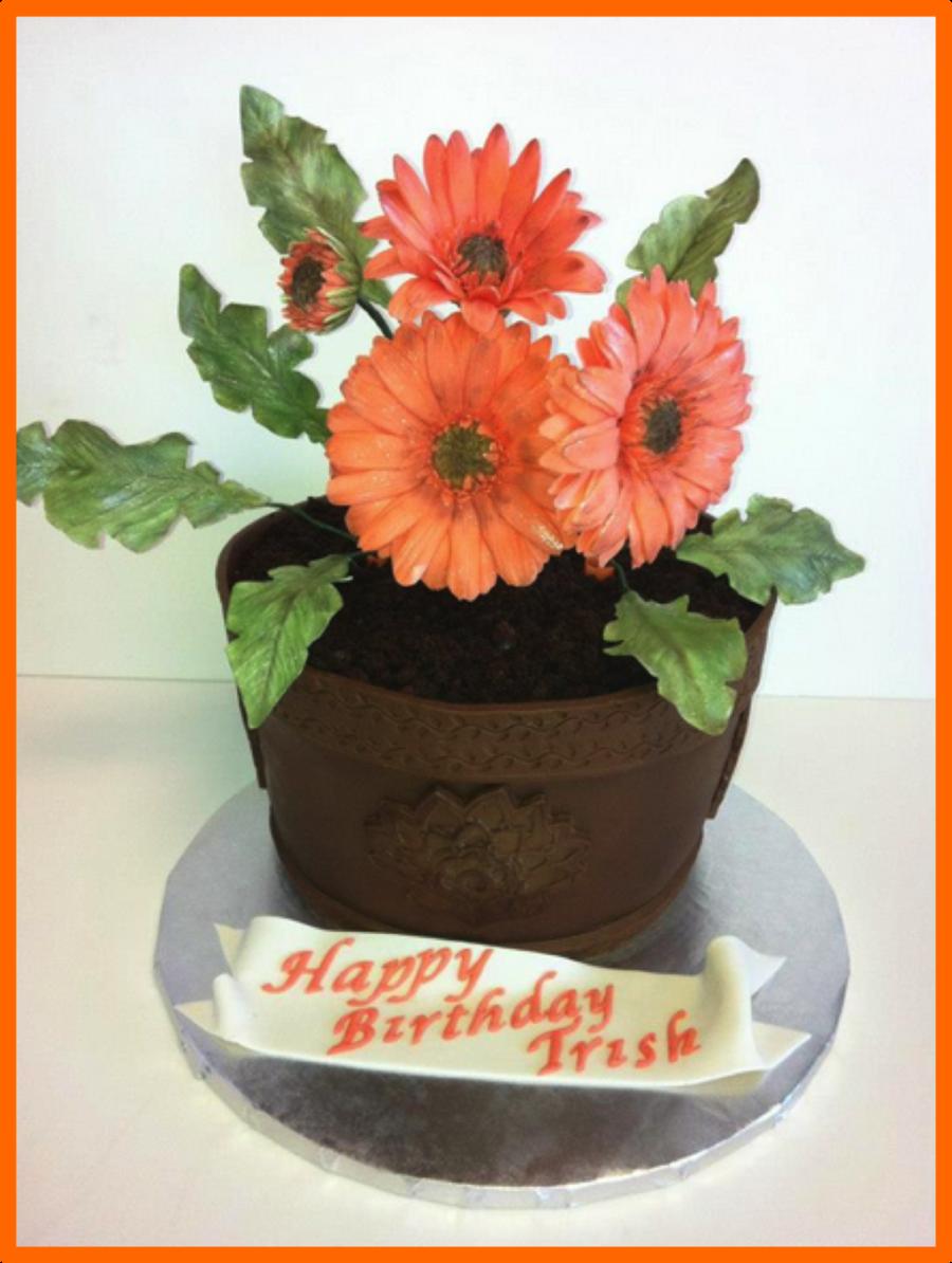 Gerber Daisy Flower Cake