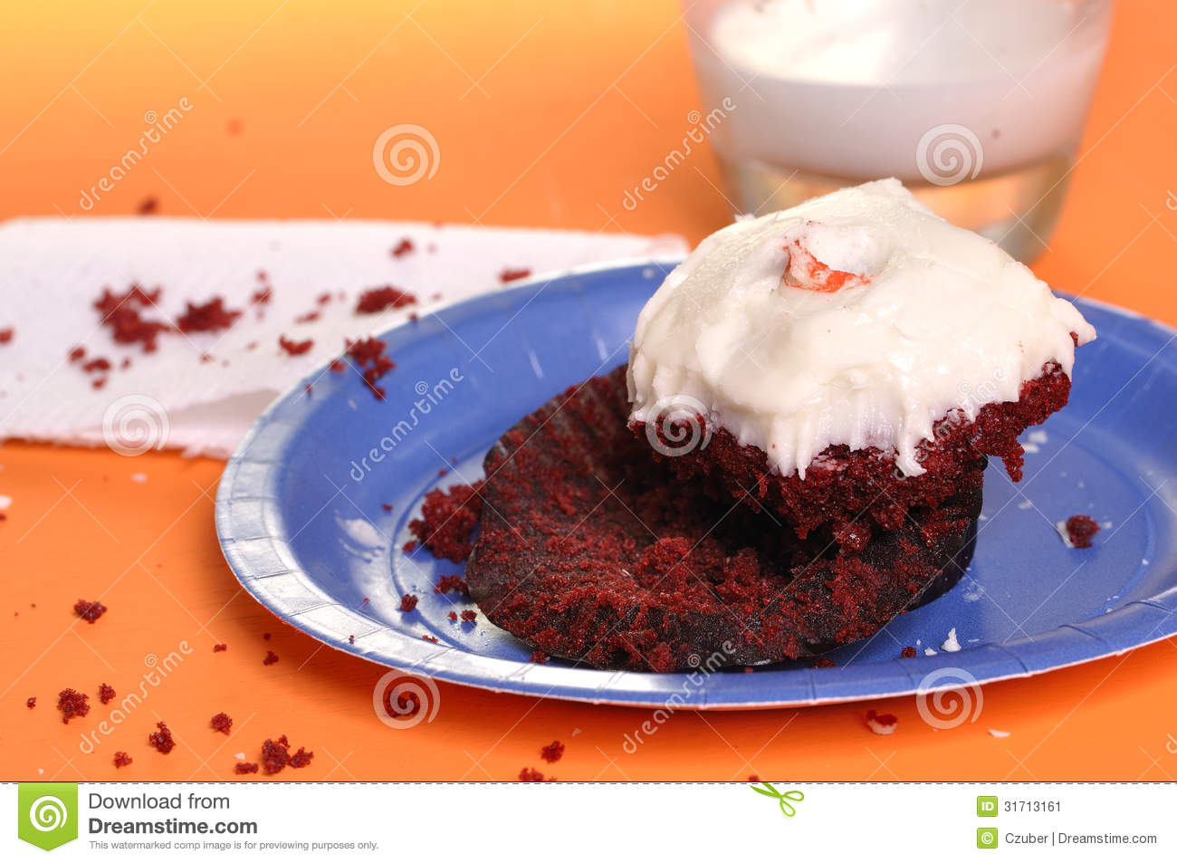 Half-Eaten Cupcake