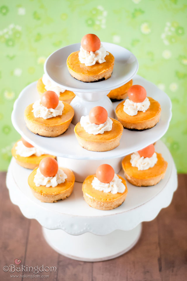 Mini Pumpkin Cheesecakes with Ginger Snap Crusts