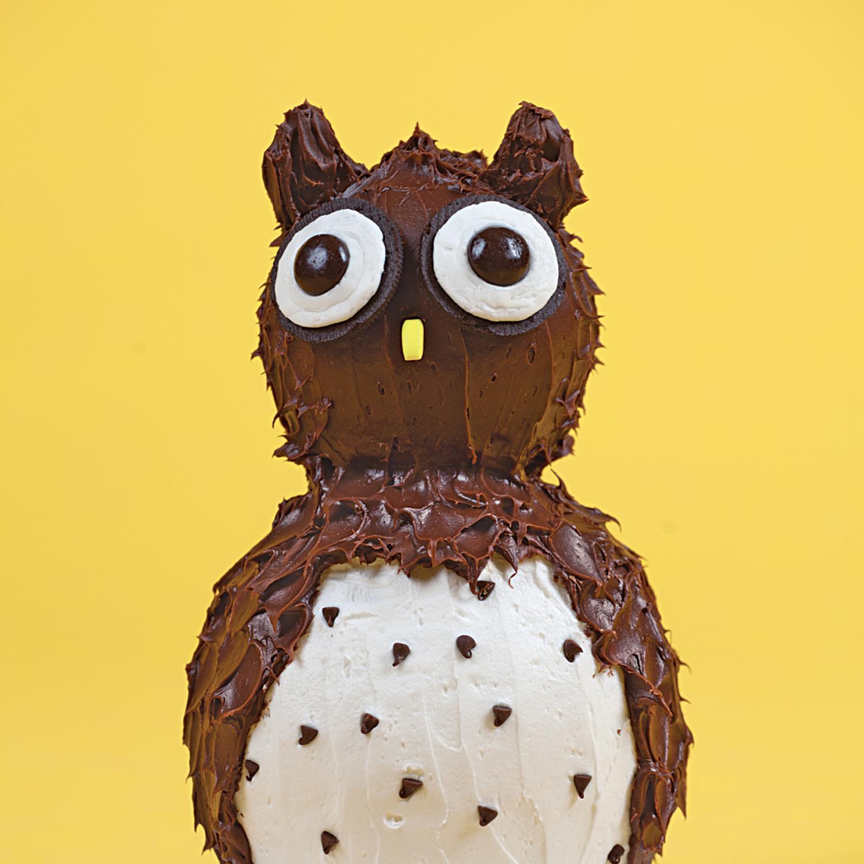 Animal Birthday Cake Ideas