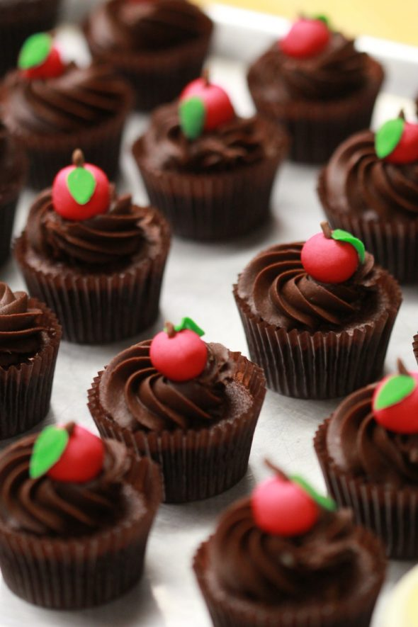 Easy Vanilla Cupcakes with Chocolate Frosting
