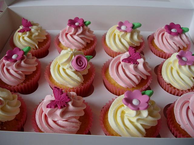 Pink Garden Bugs Cupcakes