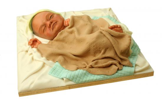 Real Looking Baby Cake
