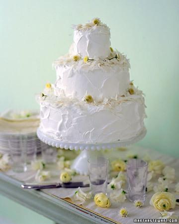 Martha Stewart Coconut Wedding Cake