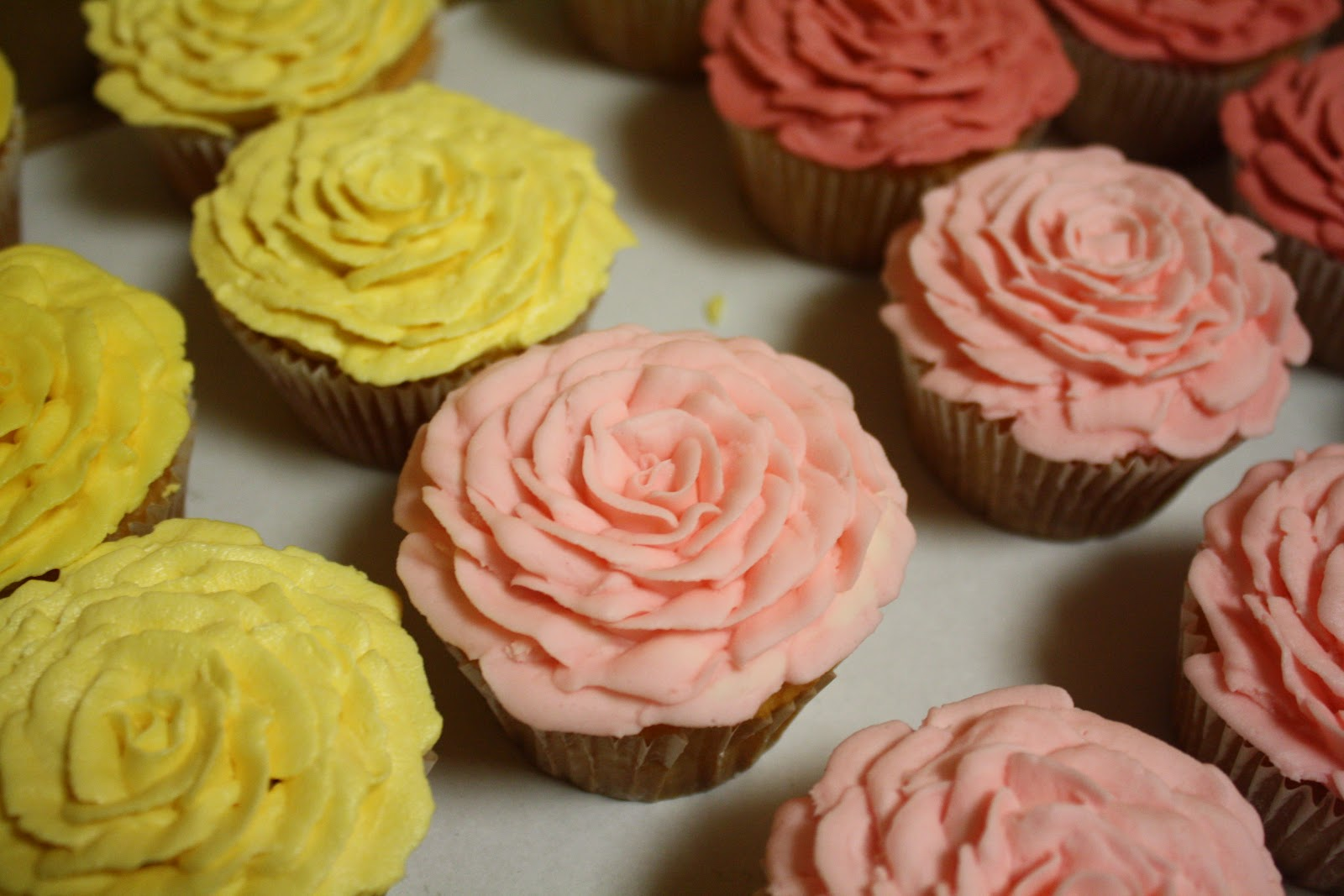 Buttercream Roses On Cupcakes