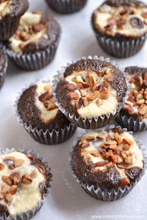 Chocolate Chip Mini Cheesecake Cupcakes