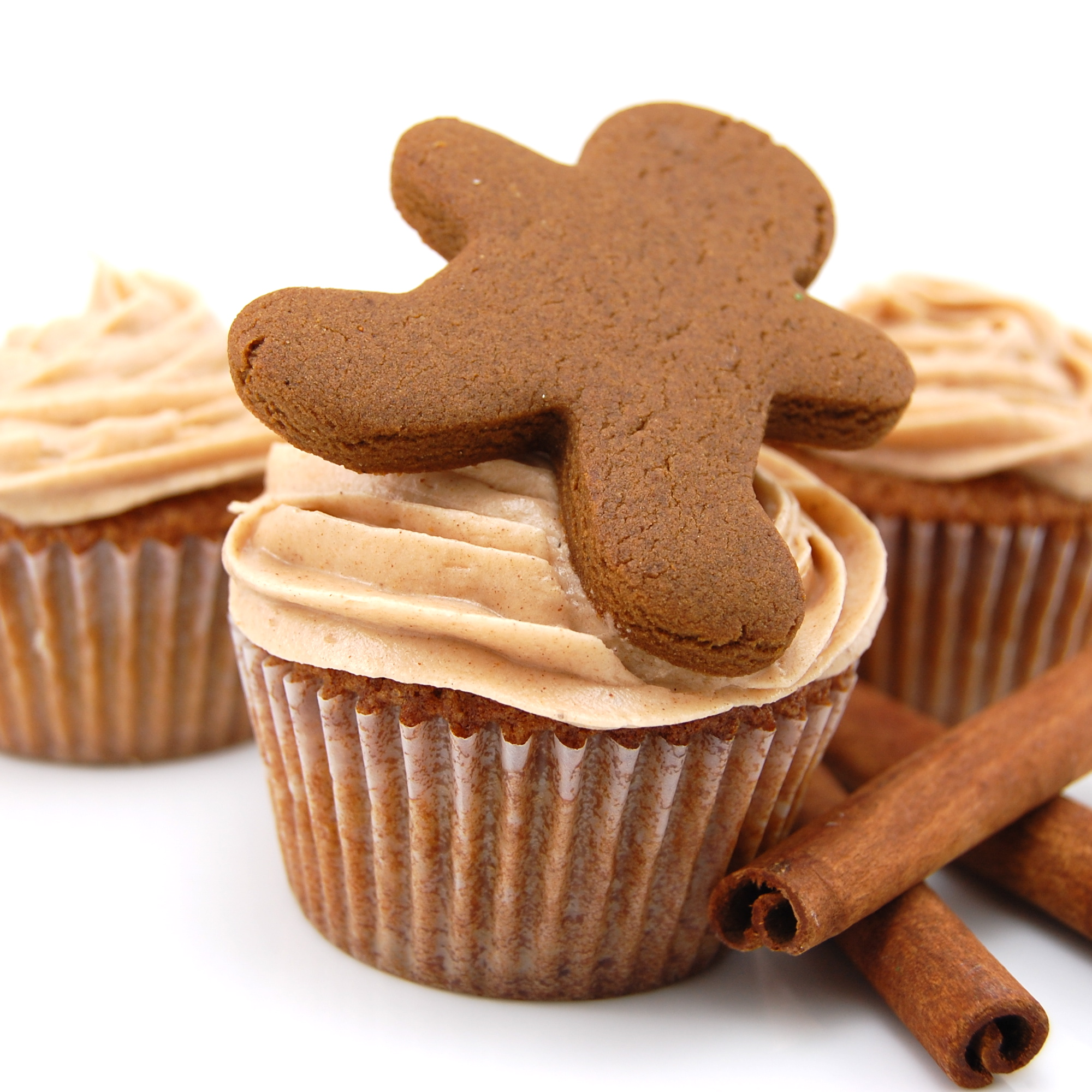 Gingerbread Cupcakes with Cinnamon Frosting
