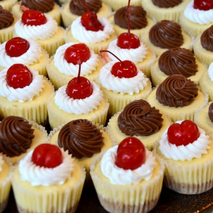Mini Cheesecake Recipes with Vanilla Wafers
