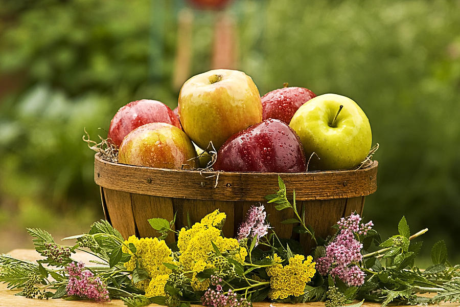Country Apple Baskets