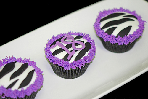 Purple Zebra Birthday Decorations