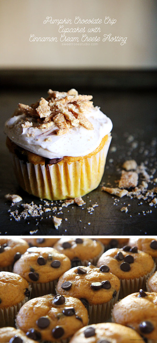 6 Photos of Chocolate Chip Pumpkin Cupcakes With Cream Cheese Frosting