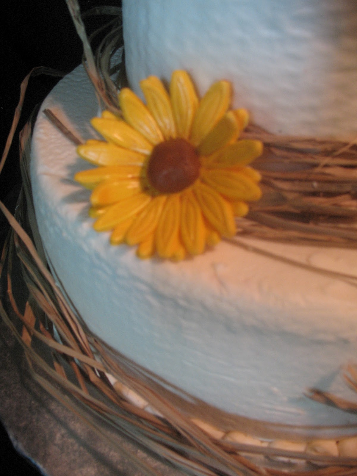Country Wedding Shower Cake Ideas