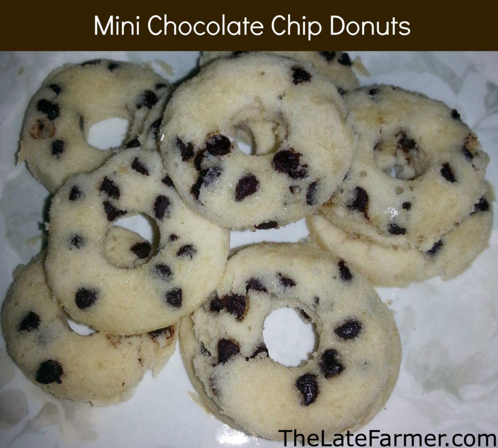 Mini Chocolate Chip Donuts