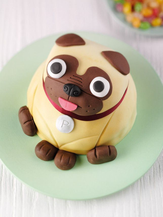 12 Photos of Pugs For Pug Cakes