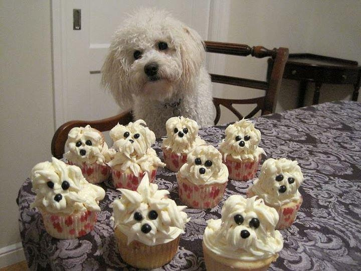 Cupcakes That Look Like Dogs