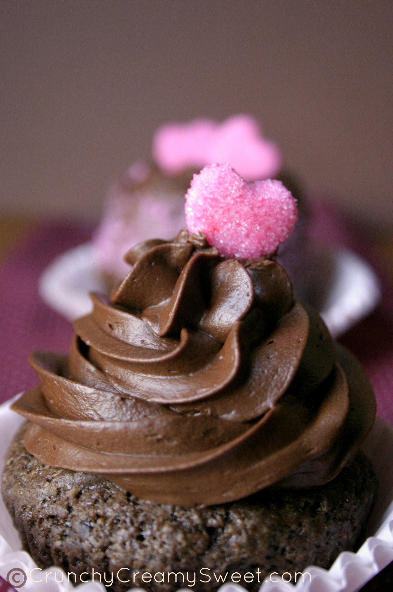 Cupcakes with Chocolate Ganache Whipped Frosting