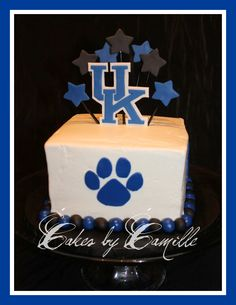 University of Kentucky Wildcats Cake