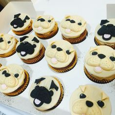Dog Face Cupcake