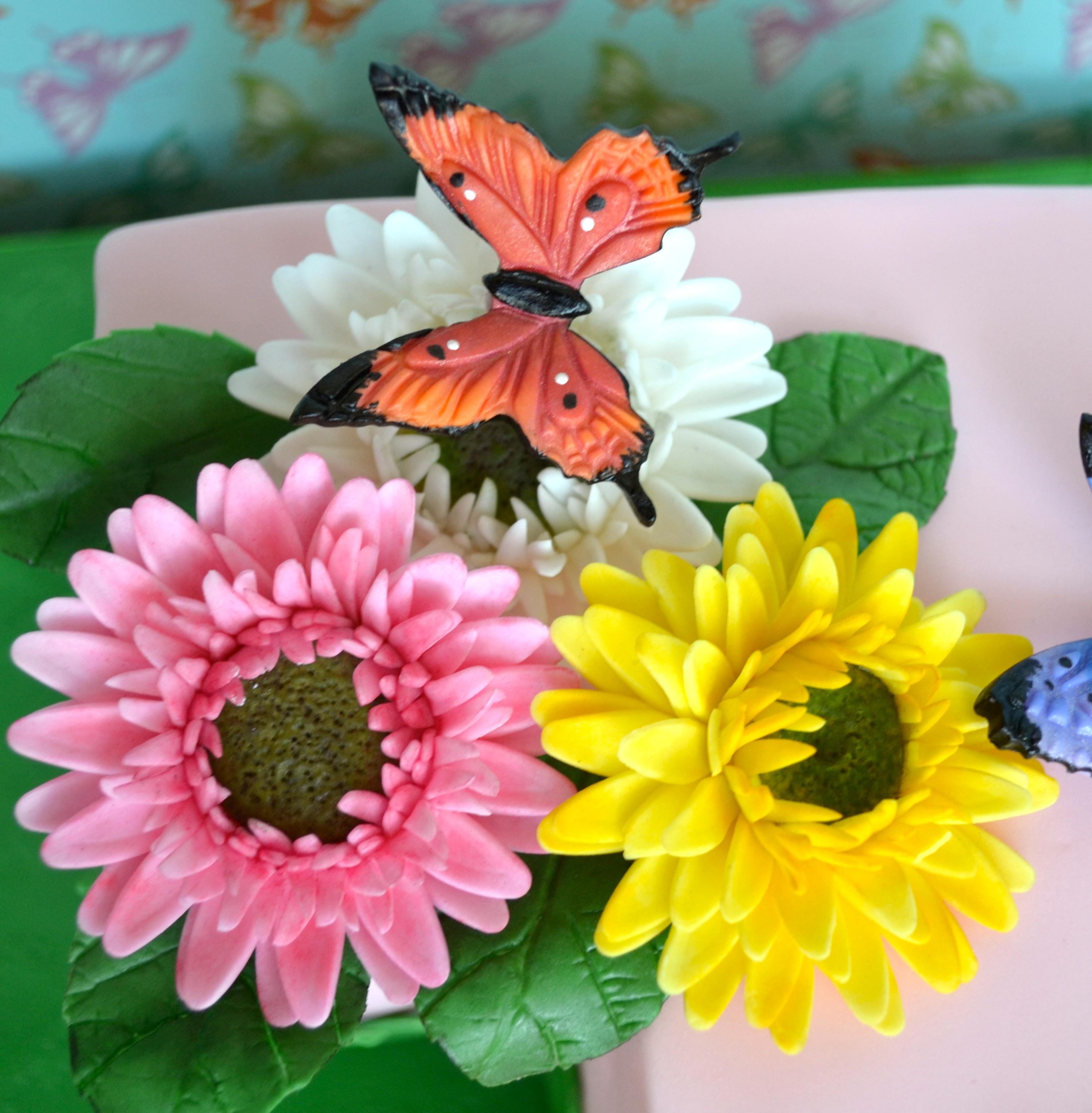 Gerber Daisies and Butterflies