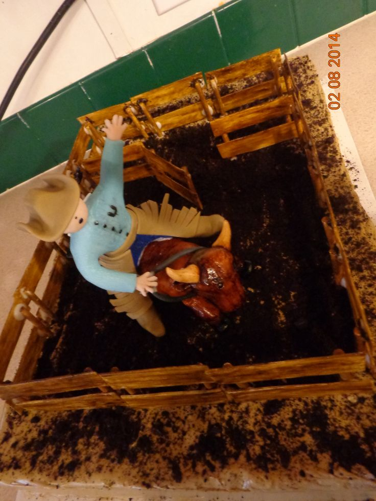 Pictures of Rodeo Bull Riding Birthday Cakes