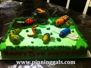Boys Bug Birthday Cake Ideas