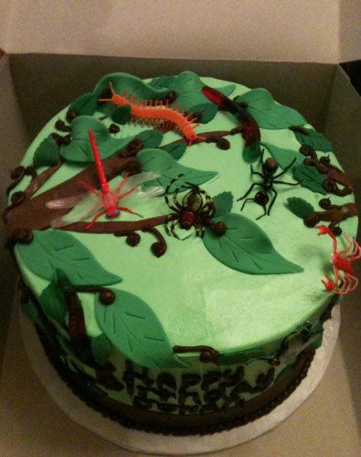 Bug Themed Birthday Cake