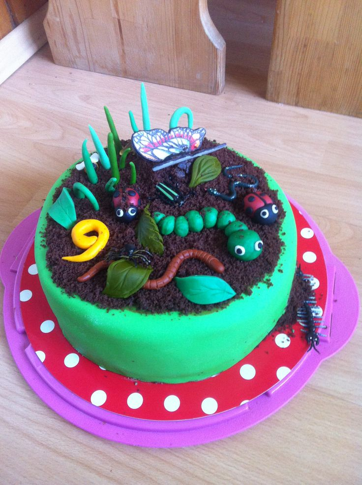 Insect Birthday Cake