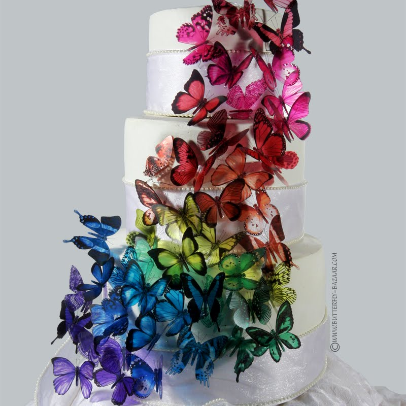 11 Photos of Cakes With Butterfly Accents