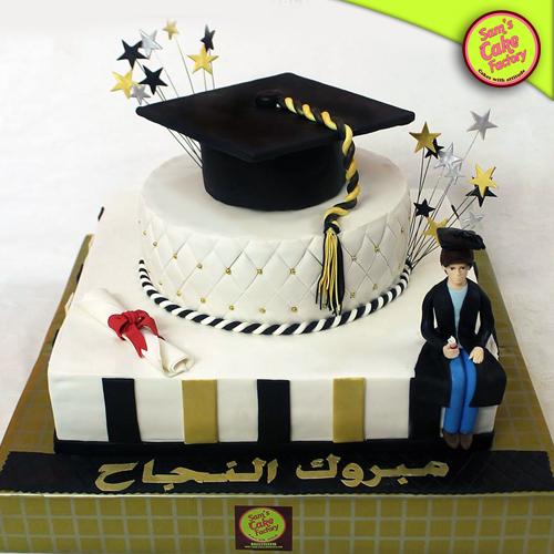 Sam's Graduation Cakes 2017