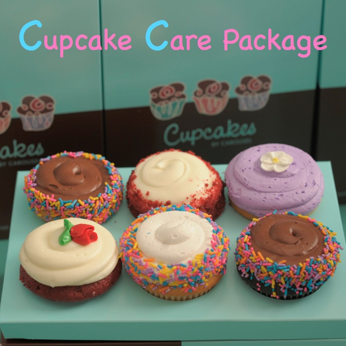 Cupcake Care Package