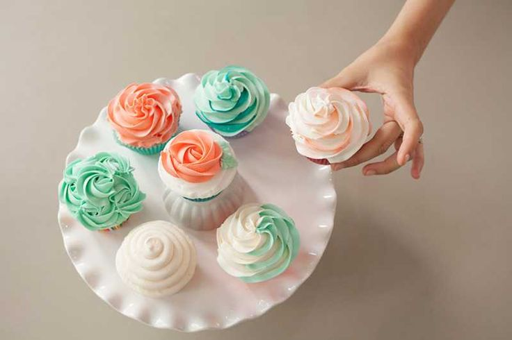 Wilton Cake Decorating Cupcakes